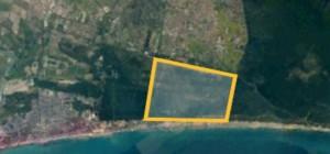 l'area sorvegliata della pineta (circa 600 ettari)